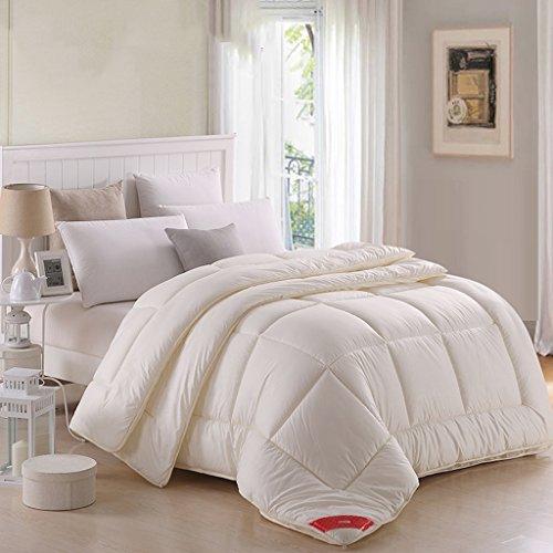 MMM Couette Combo garder chaud plus épais Quilt d'hiver Core Four Seasons Literie (taille : 200 * 230cm(4kg))
