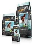 2 x 12,5 kg = 25 kg Belcando ADULT GRAIN-FREE Ocean getreidefreies Hundefutter