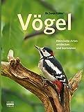 ISBN 3846830003
