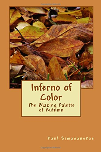 Inferno of Color: The Blazing Palette of Autumn
