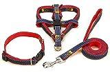 Cowboy Hund Geschirr Leine Set inklusive Geschirr Halsband Leine,Nylon Softgeschirr im klassischen Jeans Look,für kleine,mittlere und große Hunde,Walking Laufen Training für Hund (M(4-10kg))
