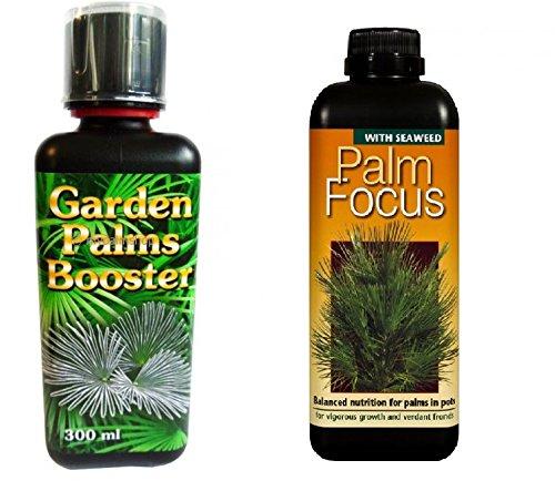 SET Exoten- und Palmendünger Palm Booster Palm Focus 300ml