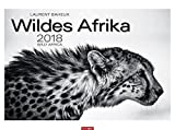 Wildes Afrika - Kalender 2018 - Weingarten-Verlag - Laurent Baheux - Wandkalender mit edlem Duoton-Druck - 78 cm x 58 cm