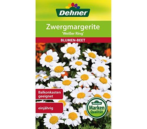 """Dehner Blumen-Saatgut, Zwergmargerite """"Weißer Ring"""", 5er Pack (5 x 1 g)"""