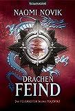 Drachenfeind: Roman (Feuerreiter-Serie, Band 8)