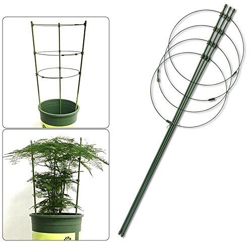 Yunhigh Support de Plante de Jardin, Anneaux de Soutien de Plante en Métal pour Les Plantes Hautes Plante grimpante Pot Plante Robuste Tomate Concombre Treillis Cage