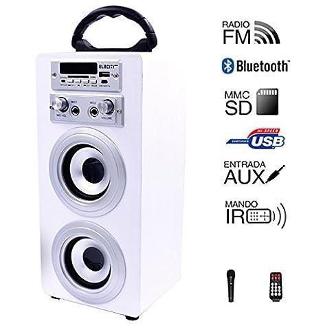 Enceinte portable avec Bluetooth USB SD Batterie boule disco Lumières LED Microphone voix blanc
