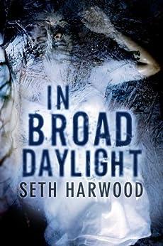 In Broad Daylight von [Harwood, Seth]