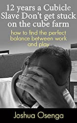 12 years a Cubicle Slave: How to Find the Perfect Balance between work and play: Work Life Balance Tips (English Edition)