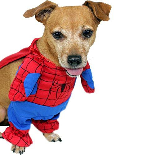 (Animally® Hunde Kostüm - Spiderman Motiv - Superheld Outfit - Karneval Halloween (S))