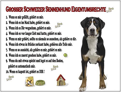 Blechschild / Warnschild / Türschild - Aluminium - 20x30cm 'Eigentumsrechte' Motiv: Großer Schweizer Sennenhund stehend (08)