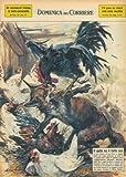 A S.Piero in Bagno una volpe penetrata in un pollaio e stata coraggiosamente affrontata dall'unico gallo che a colpi di becco l'ha accecata.
