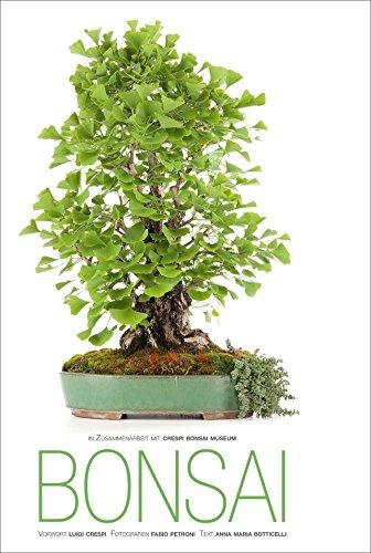 Bonsai Handbuch: 30 faszinierende Aufnahmen von Meisterfotograf Fabio Petroni zu Ahorn, Ginkgo, Azalee, Wacholder oder Glyzinie Bonsaipflanzen aus dem Crespi Bonsai Museum