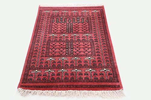 Pink City Souvenirs Handgeknüpfter indischer traditioneller Teppich 2.5X 4 Fuß (75 x 120 cm) Rosa Wolle Parda Design