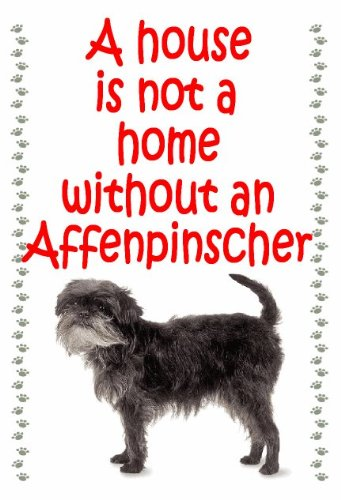 Affenpinscher – Novelty Dog keyrings – house