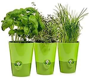 emsa kr utertopf 39 fresh herbs 39 aus kunststoff 3er set xh 13x17 3 cm je topf intelligentes. Black Bedroom Furniture Sets. Home Design Ideas