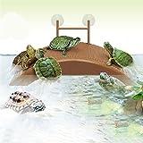 VIDOO Acquario Serbatoio Tartaruga Rettile Crogiolarsi Terrace Island House Dock Pier Decorazioni Per Piattaforme