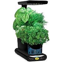 AeroGarden Miracle-Gro Sprout LED avec kit de capsules de graines d'herbes gourmets (noir)