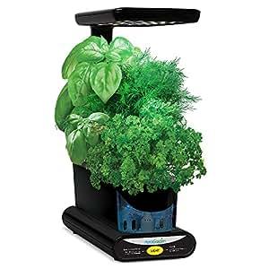 Miracle-Gro AeroGarden Sprout LED avec kit de capsules de graines d'herbes gourmets (noir)