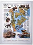 Image de Dinosaurs n.america 67,5x 50