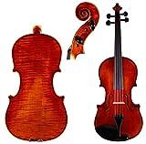M. Ravel VL100 4/4 Violin Outfit