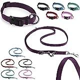 CarlCurt Classic-Line Hundehalsband & Hundeleine im Set, aus strapazierfähigem Nylon, S 30-45cm & S 1,90m, lila