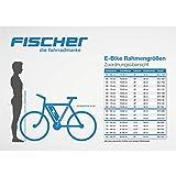 FISCHER E-Bike CITY ECU 1703, Mittelmotor 36 V/317 Wh und LCD-Display - 2
