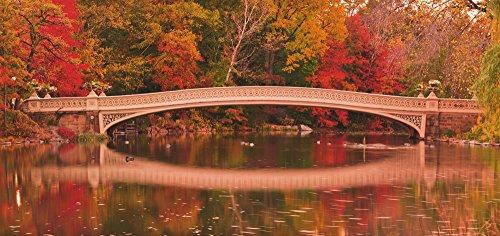 Artland Qualität I Glas Küchenrückwand ESG Spritzschutz Küche 120 x 56 cm Landschaften Wald Foto Bunt F1TJ Panorama von Herbstfarben an der Bow Bridge im Central Park. New York City