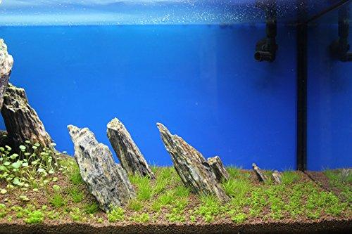 Aquarium Rock Fish Tank Decoration Slate 100% Natural Ideal For Caves WOOD STONE 10kg Set 6