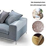 AUOKER Katzensofa-Schutz, Kunststoff, Couch-Schutz vor Katzen, 2 Stück, ausgezeichneter Katzenkrallen-Schutz für Tischset, Sofa, Schonbezüge – 48,3 x 15,2 cm