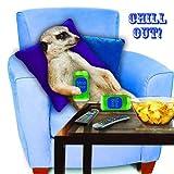 Erdmännchen Karte - Chill Out! - Geburtstagskarte