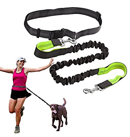Hands free Running Dog Lead, Reflective Dog Training Lead, Extendable Bungee & Durable Dual Handle Leads for Walking Hiking Jogging, Retractable Waist Belt for Medium Large