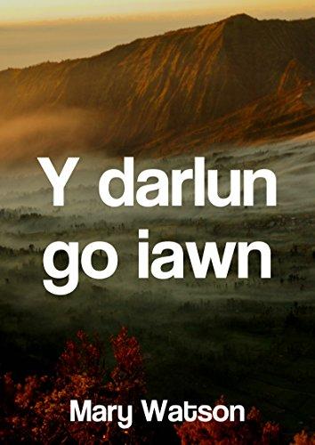 Y darlun go iawn (Welsh Edition) por Mary  Watson