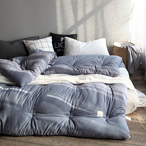 MMM Coton lavé simple Automne et hiver Couette Edredon Éléments plus épais Gardez un endroit chaleureux Ensemble de literie (Couleur : Blue ash, taille : 220 * 240cm(4kg))