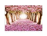 deinebilder24 Kunstdruck XXL - 60 x 80 cm - Pink Flower Trees Japanische Kirschblüte Rosa