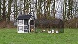 Hühnerstall Twin mit Legenest und auslauf Louis 371x99x134cm