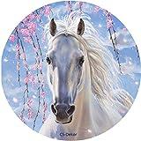 CS-Dekor Tortenaufleger Pferd 01 mit Glitzereffekt