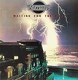Waiting for the Roar [Vinyl LP]
