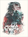 Poster 30 x 40 cm: Eulen von Barrett Biggers - Hochwertiger Kunstdruck, Kunstposter