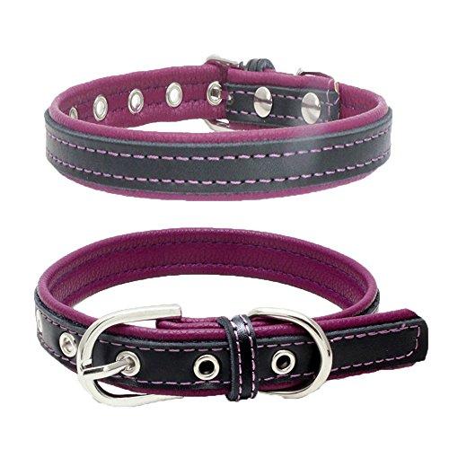 Balock Schuhe Welpen Hundehalsbänder,Einstellbare Schnalle Hund Welpen Hundehalsbänder,Puppy Cat Halskette für Kleine, Mittlere,Hunde,für Mädchen Jungen (Lila, XS) -