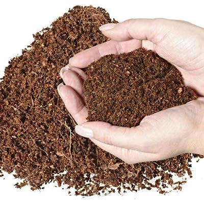 70 L Kokosblumenerde Quellerde - torffreie Blumenerde - für den Innen- und Außenbereich - sehr ergiebige Pflanzerde - torffrei und ungedüngt - 5 kg Kokos Brikett - Pflanzerde für Obst, Gemüse, Zierpflanzen und Exoten - fein - von Baustoffhandel Thekl