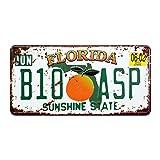 Eureya Floride B10 ASP automatique de voiture de plaque d'immatriculation Tag Home/CAFE Bar/Pub/restaurant/salon Décoration murale vintage plaque 6'x12'