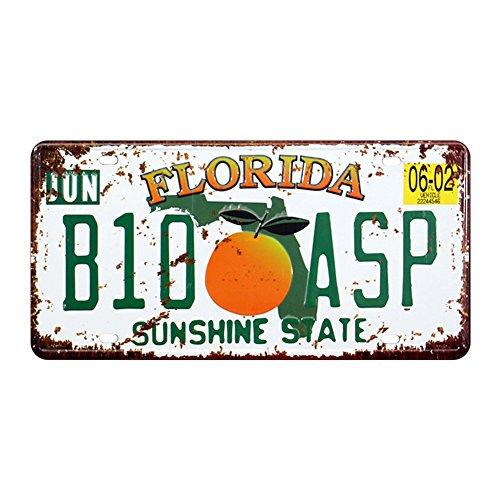 """Eureya Floride B10 ASP automatique de voiture de plaque d'immatriculation Tag Home/CAFE Bar/Pub/restaurant/salon Décoration murale vintage plaque 6""""x12"""""""