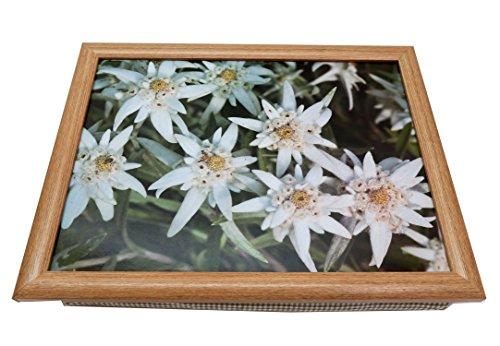 Knietablett Edelweiß Lapdesks mit Holzrahmen 43x33x7 cm (Grüne Frühstück Kissen)