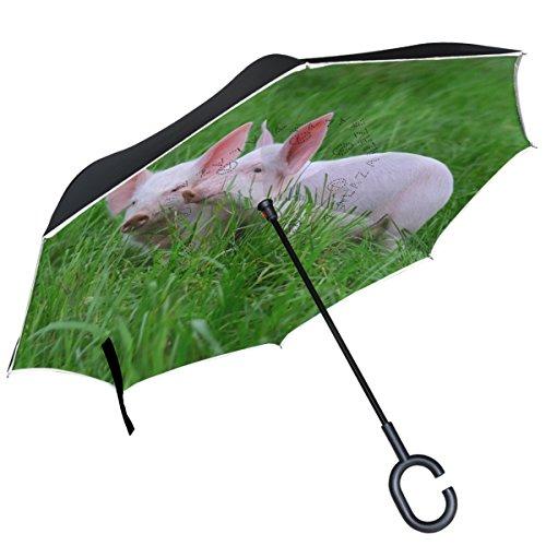 Alaza Cute Pink Schwein auf Gras seitenverkehrt Regenschirm Double Layer winddicht Rückseite Regenschirm -