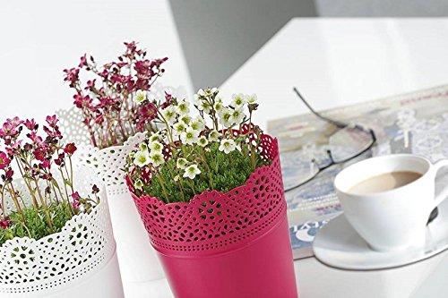 Rond cache-pot 18 cm LACE en plastique romantique style en blanc