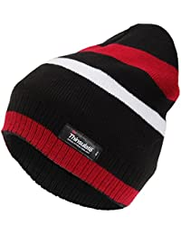 Universal Textiles ProClimate Mens Thermal Thinsulate Striped Winter Beanie Hat