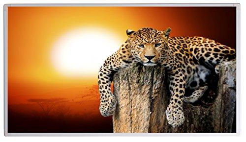 Könighaus Bildheizung (Infrarotheizung mit hochauflösendem Motiv) 5 Jahre Garantie (1000-Leopard)