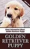 Golden Retriever Puppy: Great Information About Golden Retriever Puppy