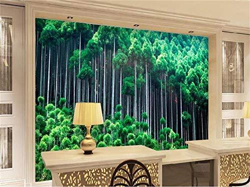 benutzerdefinierte größe 3d fototapete wohnzimmer wandbild grün bambus wald malerei TV sofa hintergrund vliestapete für wand 3d, 150 cm X 105 cm